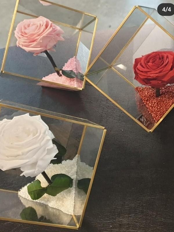 xl Kubus met gestabiliseerde roos